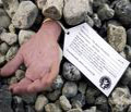 campaign-against-stoning